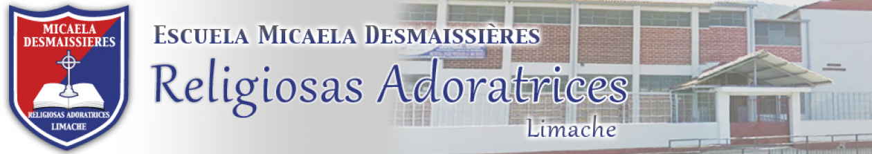 Escuela Micaela Desmaissieres Limache